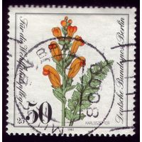 1 марка 1981 год Берлин Цветок 651