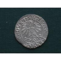 Полугрош 1560г