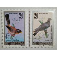 Вьетнам. Птицы