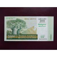 Мадагаскар 2000 ариари 2007 UNC