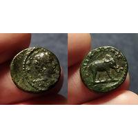 Римская Империя, Вифиния, город Никея, Гета, 198-209 годы н.э. Диаметр 15 мм. На реверсе идущий слон. Крайне редкая монета, RRR.