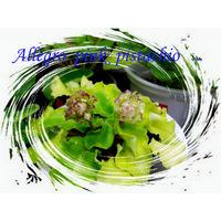Фиалка Allegro pink pistachio -детка