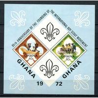 Гана - 1972 - Скаутское движение - [Mi. bl. 47] - 1 блок. MNH.