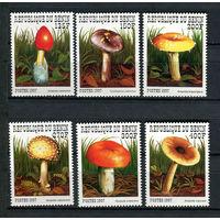 Бенин - 1997 - Грибы - [Mi. 989-994] - полная серия - 6 марок. MNH.