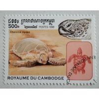 Марки. Камбоджа 1998. Черепаха