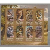 Совы птицы фауна Конго 2012г  лот 32