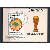 Гайана - 1989 - Футбол - [Mi. bl. 50] - 1 блок. Гашеный.