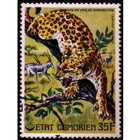 Кошки. Коморские острова (Коморы). 1977. Леопард. Марка из серии. Гаш.