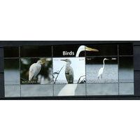 Бурунди - 2011 - Птицы (3 марки) - 1 блок. MNH.