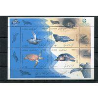 Иран. Морские черепахи. Блок