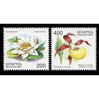 Цветы (Беларусь 2001) чист