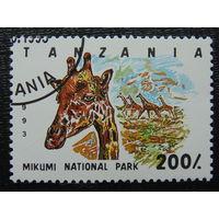 Танзания 1993г. Фауна.