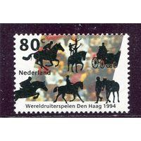 Нидерланды. Международные конные игры