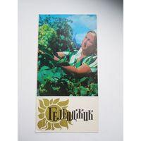 Буклет  Геленджик  1977 год
