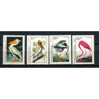 Гвинея-Бисау - 1985 - Птицы - (у марки с номиналом 10 на клее есть желтые пятна) - [Mi. 842-845] - полная серия - 4 марки. MNH.