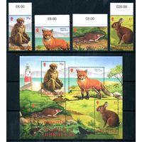 Фауна Гибралтар 2002 год серия из 4-х марок и 1 блока (М)