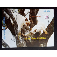 Экваториальная Гвинея 1978 г. Кошки. Фауна, полная серия из 7 марок + Блок #0149-Ф1