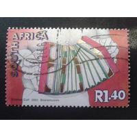 ЮАР 2001 гармошка
