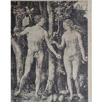 Durer   Adamo ed Eva.  28x19cm.