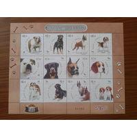 Мексика 2007 Собаки малый лист Mi-32,0 евро