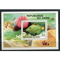 Конго (Заир) - 1980 - Рыбки - [Mi. bl. 38] - 1 блок. MNH.