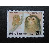 Корея 1992г.  Фауна.