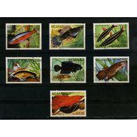 Никарагуа 1981г. аквариумные рыбки, 7м.