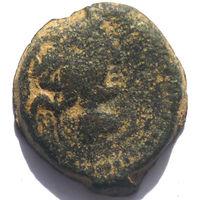 СЕЛЕВКИДЫ. АНТИОХ IX КИЗИКЕН (116-95 ДО Н.Э.) AE17.