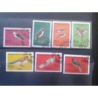 Магадаскар 1986-7 Птицы