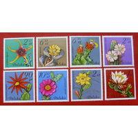 Польша. Цветы. ( 8 марок ) 1981 года.
