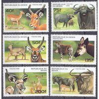 Бенин фауна