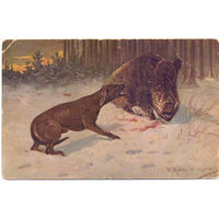 До 1917 г. На кабана
