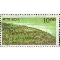 Лесовосстановление Индия 1984
