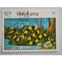 Лаос 1984. Змея