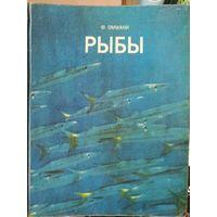 Рыбы - Оммани