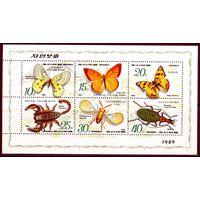 Корея бабочки фауна скорпион