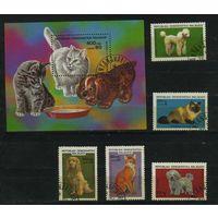 Мадагаскар 1985г, собаки и кошки, 5м. 1бл.