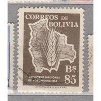 Боливия Первый Национальный Агрономический Конгресс 1954 год  лот 1