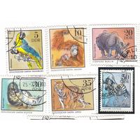 ГДР 1975 Фауна Животные в зоопарке (АНД