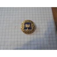 """Значок"""" Древний герб.Тюмень"""""""