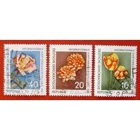 ГДР. Цветы. ( 3 марки ) 1961 года.