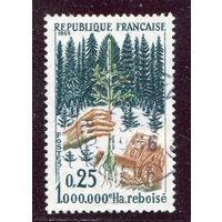 Франция. Восстановление лесов
