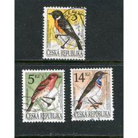 Чехия. Певчие птицы