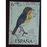 Испания. Птицы. 1985г.