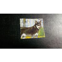 Финляндия. 1989. Собака. Гашеная. Без клея.