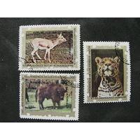 Экваториальная Гвинея 1976 1976 году 200-летие Независимости США Флора и фауна