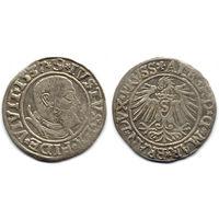 Грош 1537, Пруссия, Альберт Гогенцоллерн. Портрет с короткой бородой, более редкий год, R