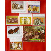 Экваториальная Гвинея. Кошки. ( Блок и 7 марок ).