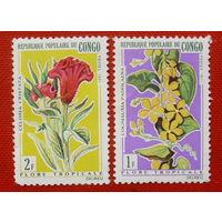 Конго. Цветы. ( 2 марки ) 1971 года.