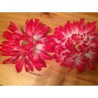 Очаровательные заколки на шпильке в виде астры, очень красивый и качественный цветок. Диаметр 13 см. Цена указана за одну штуку.
